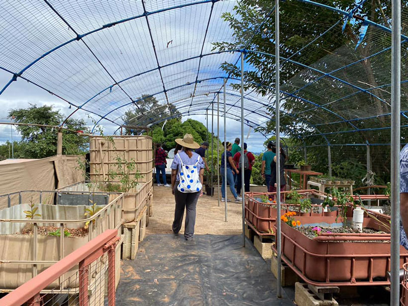 Tourists visit one of the farms working with agritourism in Puerto Rico.
