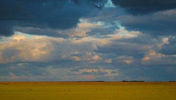 拉丁美洲的许多生态系统未能被环境观测网所代表