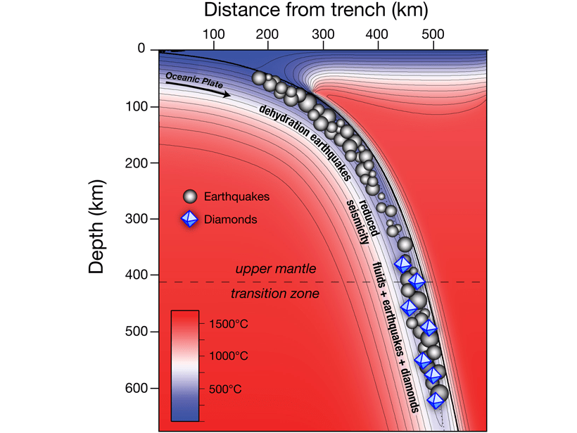 Figure showing a thermal model of a subduction zone with the relatively cold (blue) oceanic plate sinking into the comparatively hot (red) mantle.