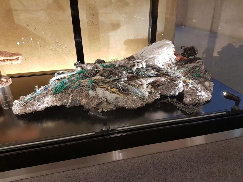 Fotografía de un plastiglomerado, una roca hecha por piezas de basura y otros detritos naturales. Este ejemplo incluye piezas blancas, verdes y una cuerda amarilla mezclados con sedimento.
