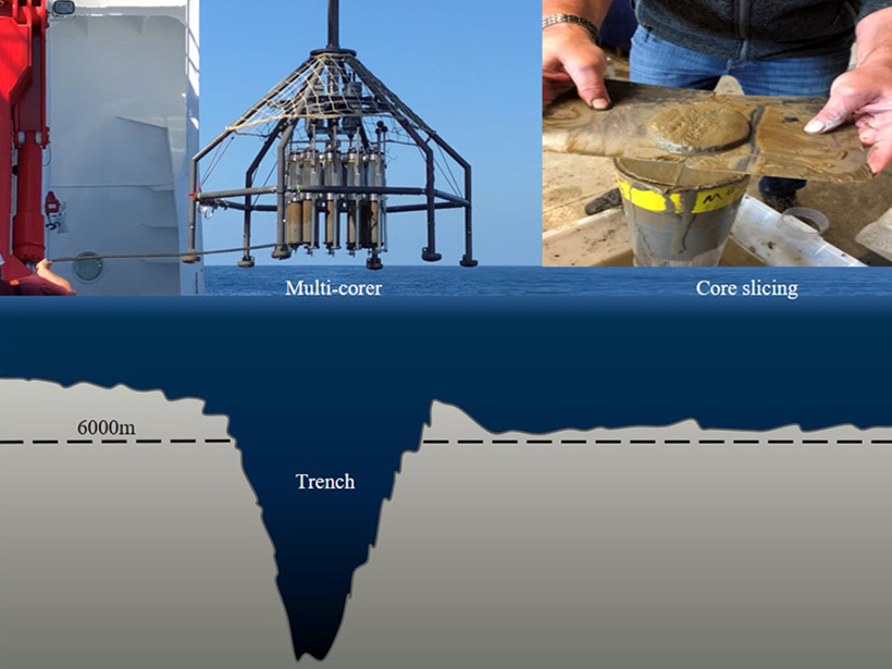 Sediment cores retrieved from the Atacama Trench (top left) and sliced on board (top right)