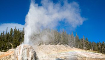 A single geyser erupts steam into the sky.
