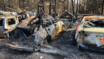Badly burned cars and trees following the 2018 Camp Fire in Northern California