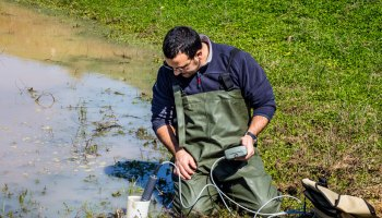 A scientist measures environmental water quality in a wetland using a multiparameter probe.