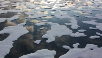 Sea ice floats in the southern Arctic Ocean.