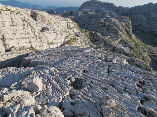Light-colored carbonate bedrock is exposed in a mountainous scene.