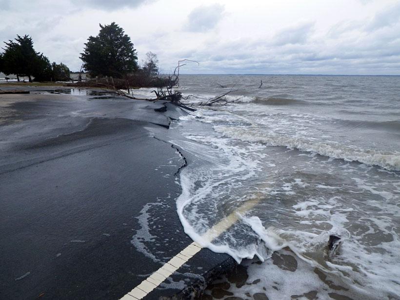 The Bayside Picnic Area on Assateague Island National Seashore after Hurricane Sandy