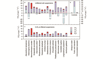 Plot showing UV-induced emissions weighted global warming potential in CO2 equivalent for each greenhouse gas emitted from cell suspensions of 16 species of marine phytoplankton.