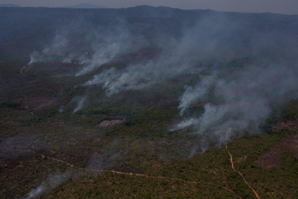 Segundo os últimos dados disponíveis, divulgados terça-feira, já arderam 62.000 hectares e o núcleo principal do parque foi arrasado pelo fogo