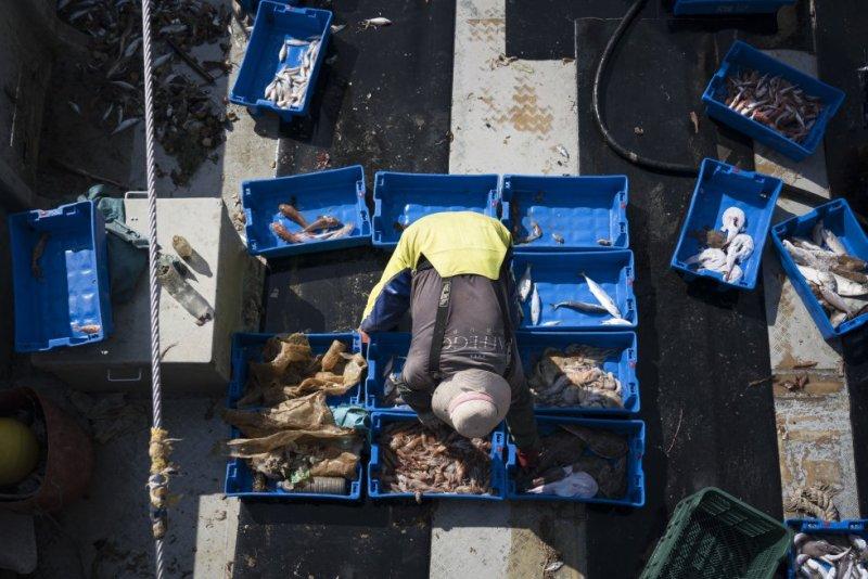 """Los marineros del 'Bona Mar 2' aseguran que en el mar han detectado la mejor eficiencia en la recogida de basura. """"La gente está cada vez más concienciada. Este problema se soluciona con educación""""."""