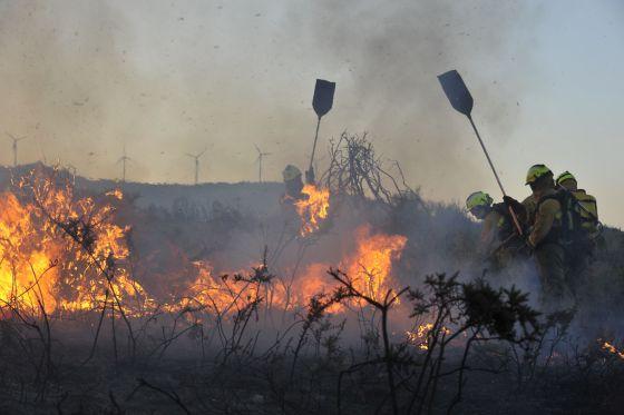 La Solución Final A Los Incendios Forestales En El Nw Peninsular La Mirada Del Mendigo