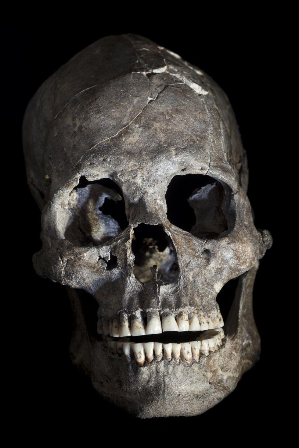 Cráneo completo de la tumba 26