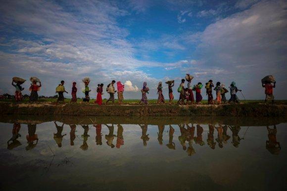 Refugiados rohingyas refletidos na água da chuva ao longo de um aterro próximo a um arrozal depois de fugir de Myanmar para Palang Khali, perto do Cox's Bazar (Bangladesh), em 2 de novembro de 2017.