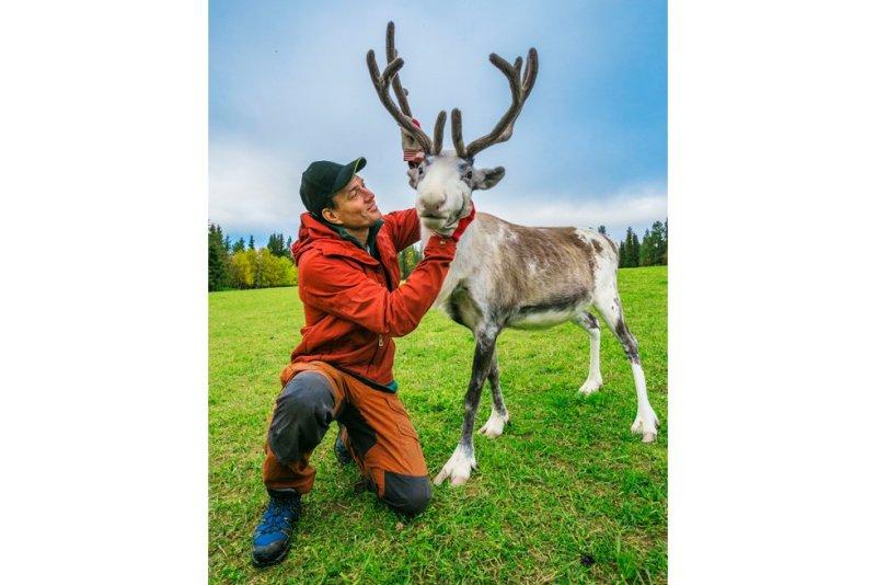 Juha Olavi Kujala, en la foto, es el último representante de cinco generaciones de una familia de pastores de renos, un oficio que en el norte de Finlandia se trasmite de padres a hijos. Estos animales de las regiones subárticas son uno de los símbolos del país de los 180.000 lagos, al igual que Laponia, las auroras boreales o los copos de nieve. Los finlandeses lograron su independencia de Rusia el 6 de diciembre de 1917, poco después de que la Revolución de Octubre colapsara el imperio de los zares. Pertenecía a Rusia desde 1809 y anteriormente era territorio sueco. El país escandinavo celebra sus 100 años con proyectos como el nuevo parque nacional de Hossa, 11.000 hectáreas de lagos y bosques boreales como los que inspiraron al compositor Jean Sibelius la suite Karelia, una serie de piezas orquestales por las que sopla el aliento salvaje de la taiga. Sibelius y el arquitecto Alvar Aalto han sido dos de las figuras más prominentes de un país cuyos niños estudian en uno de los mejores sistemas educativos del mundo.