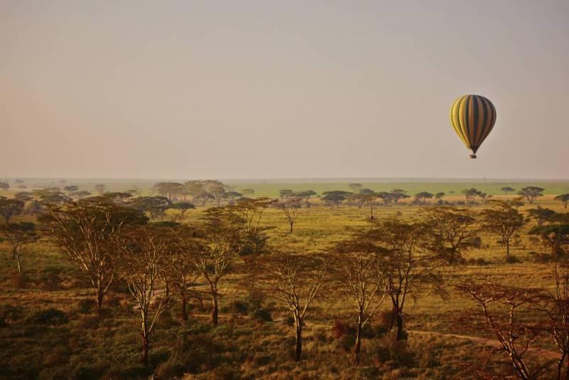 Sobrevolar al amencer en globo aerostático las llanuras del Serengueti (Tanzania), recorridas por manadas de ñus, gacelas, cebras, jirafas, elefantes y leones, es una experiencia superlativa y apasionante, en especial durante la gran migración, de abril a junio, el espectáculo más salvaje que quepa imaginar.
