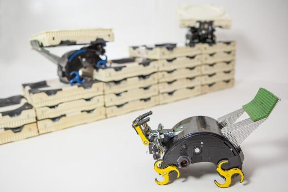 Tres robots Termes