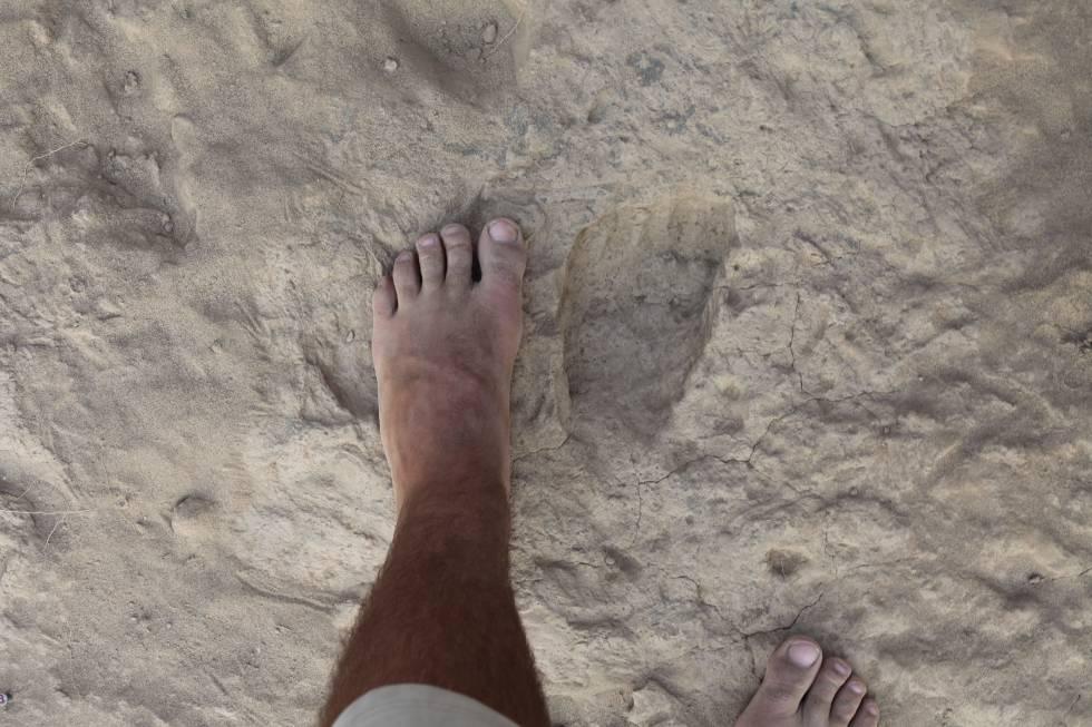 Un pie comparado con una huella fósil de 'Homo erectus'.