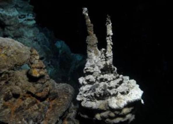 Resultado de imagen de deshielo artico desentierra fosil mas antiguo