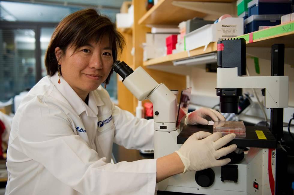 Katherine Wu, investigadora del Instituto de Cáncer Dana-Farber, en Boston (EE UU).