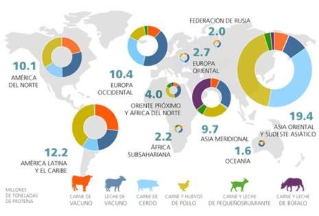 Producción ganadera mundial por región (leche y huevos expresados en proteínas).