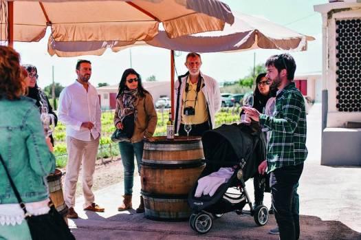 Cata de vinos en Mas Vicenç, en Cabra del Camp.