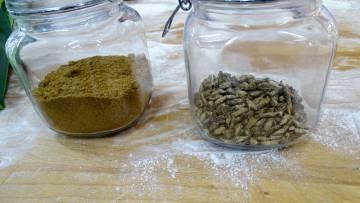 Harina de grillo (izquierda) y grillos deshidratados.