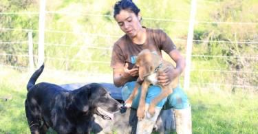 carla y sus perros