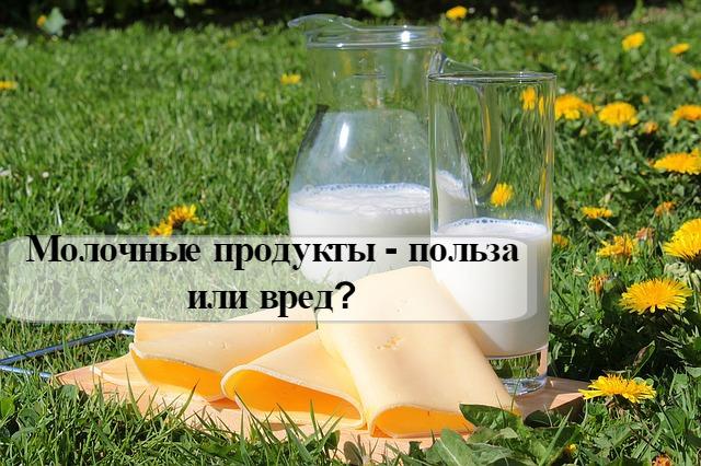 Молочные продукты - польза или вред?