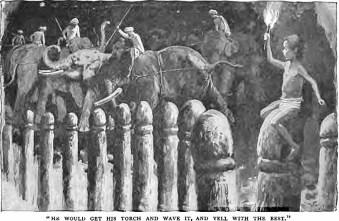 toomai elephant-catching