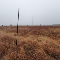 A peat depth probe from an ecological consultancy peatland depth survey of a wind farm in Ayrshire.