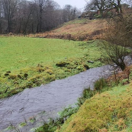 Rivers are a favoured habitat of otter, water vole, and beavers.