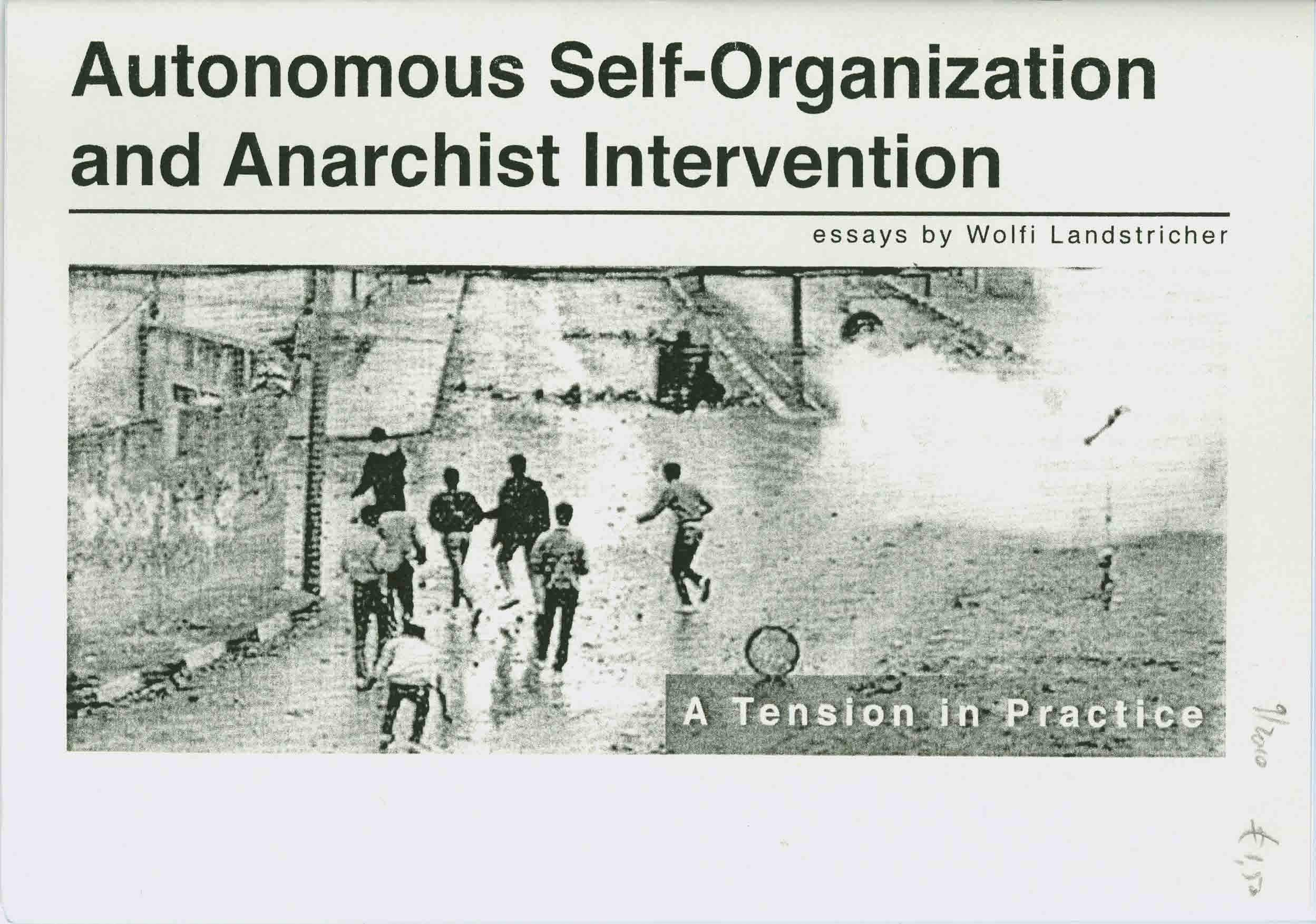 Autonomous Sef-Organization and Anarchist Intervention