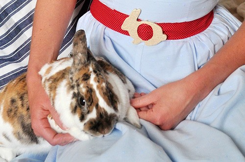 {Cuteness} Cassie Stephens' Handmade Belts… bunnes, and birdies, and teacups, oh my!