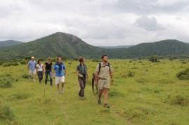 Walking Safari at Kariega Game Reserve
