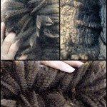 More of his amazing fleece