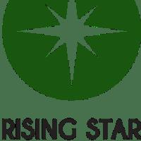 Rising Star Resumes, Lynda Spiegel, professional resume writer