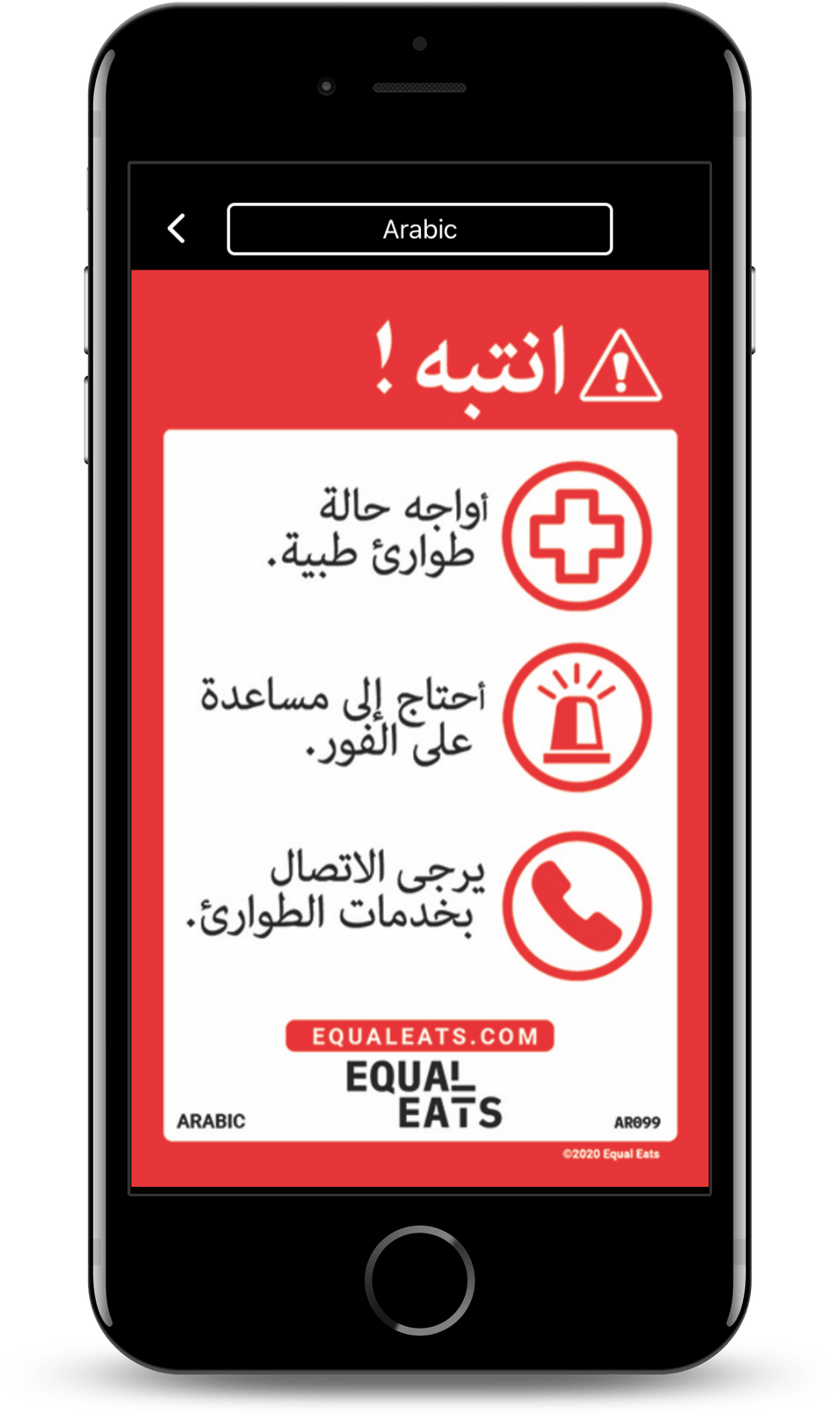 arabic food allergy translation cards