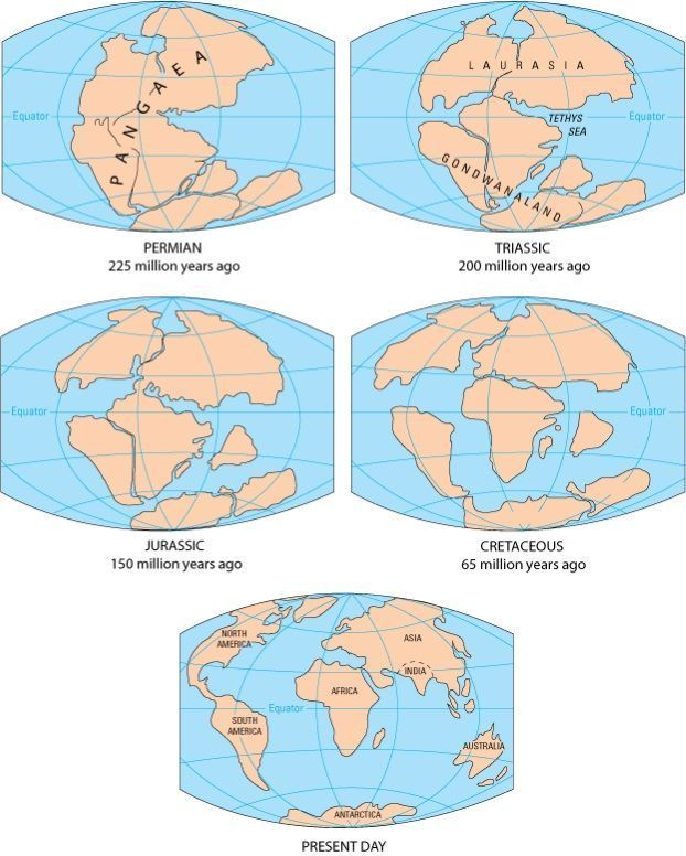 Muestra de la división del Supercontinente.