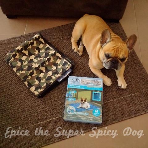 epice the super spicy dog wordpress com