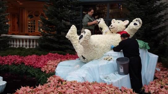 Bellagio - trocando flores do urso