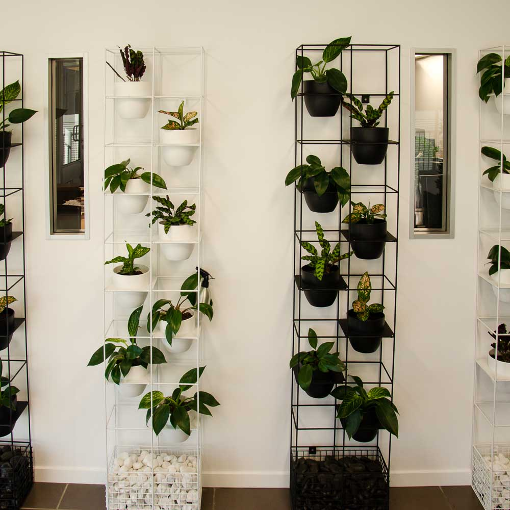 bloom vertical garden design
