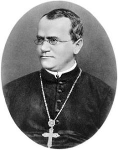 Gregor Mendel wiki image