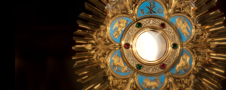 Which of these schools offer Perpetual Adoration?