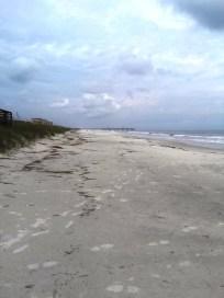 Beach - Amelia Island.