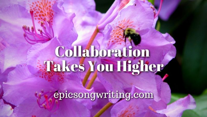 Collaboration Takes You Higher