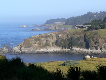 Sonoma's Wild Coast:  Leaving the City Behind Favorite day-trips from San Francisco (Part One)