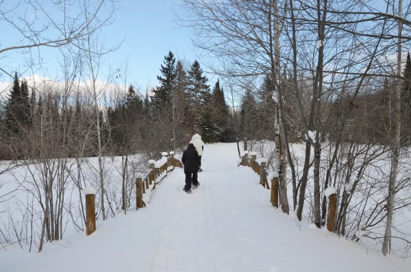 Snowshoeing at Treetops