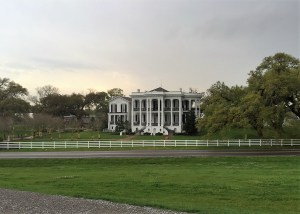 The front exterior of Nottoway Plantation House from across the road standing on top of the levee.