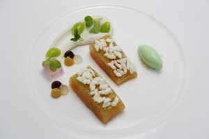 Marinated Austrian alpine Salmon with cream of Basmati rice and Wasabi ice