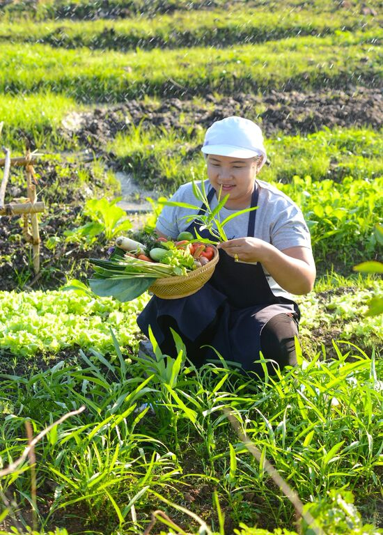 Harvesting ingredients for lunch. Photo courtesy of Museflower Retreat & Spa.